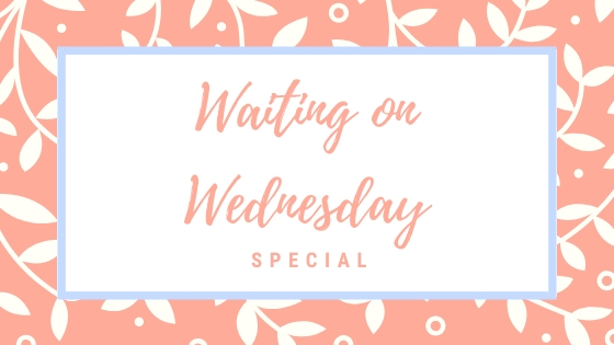 Waiting on Wednesday Special – Frühjahrsprogramm 2020 RowohltVerlag